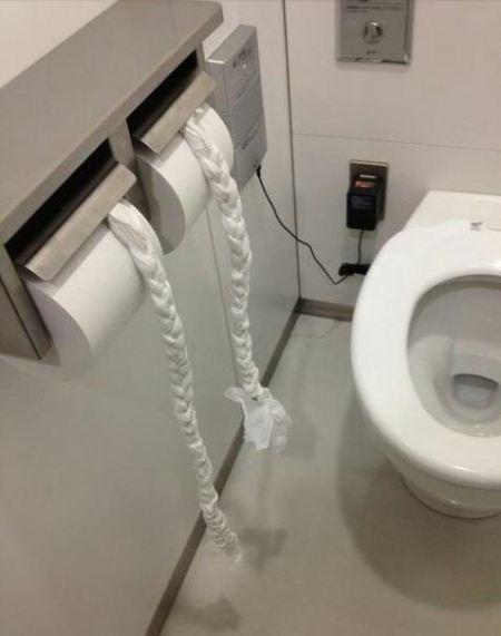 toilet tissue art