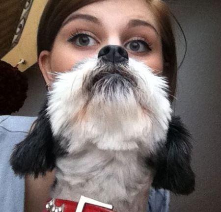 dogbeard2