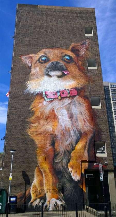 london dog graffiti